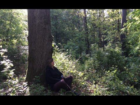 Waldzeit Lauschen